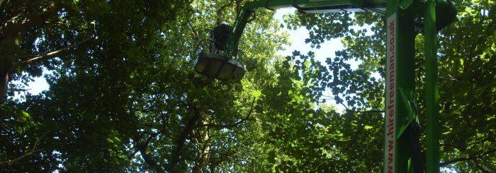 Slider trees